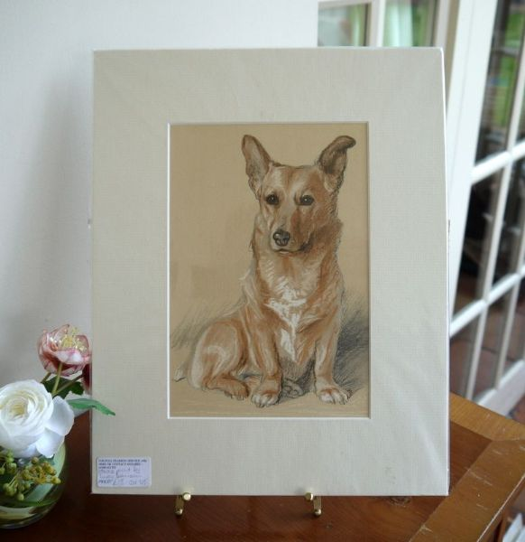 Corgi - Cor D5 - sitting looking out  1940's print by Lucy Dawson